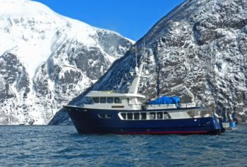 Northern Song in Tracy Arm