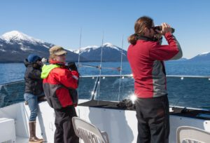 Researchers aboard the Northern Song maintain a visual location and monitor movement and behavior of the tagged whale. NOAA research permit #14122 copyright 2013 Gina Ruttle/Whalegeek