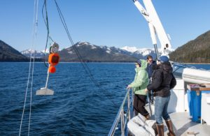 Lowering the 'tow fin', which is the transducer portion of the acoustic survey computer. NOAA research permit #14122 copyright 2013 Gina Ruttle/Whalegeek